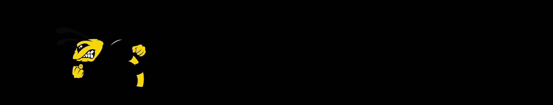 Turbowheel Hornet Logo